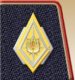 NBSG-CommanderPin.jpg