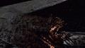 Basestar Wound Closeup.png