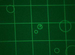 Hatari sector scan.jpg
